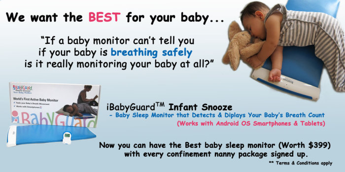 Confinemet Nanny Package Promotion!